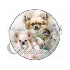 Dekal Rund Chihuahua Långhårig