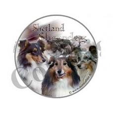 Dekal Rund Shetland Sheepdog Blue Merle